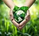Consumo Sustentável e Veganismo