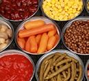 O Percurso da Alimentação Humana